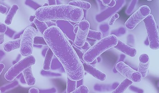 zero_pathogens_Coludtap